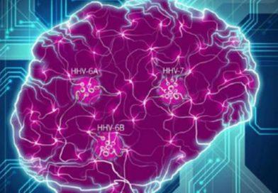 La insólita conexión entre un virus común del herpes y el Alzheimer